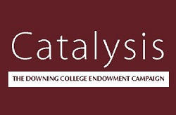 Catalysis Campaign logo